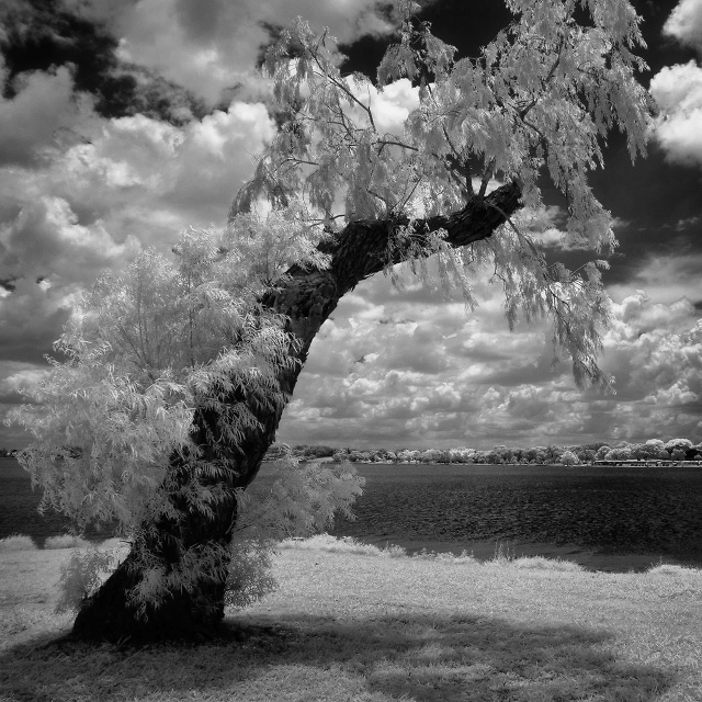 White Rock Lake, Dallas, Texas, United States